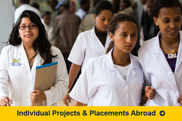 Individual Projects and Placements Abroad