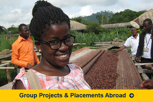 Group Projects and Placements Abroad