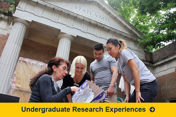 Undergraduate Research Experiences